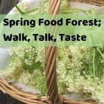 Spring Food Forest tour in Melbourne