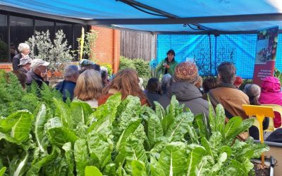 Maryborough Community Garden Open Day Fun