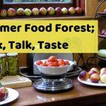 Summer Food Forest: Walk, Talk, Taste class Feb 2020 Melbourne