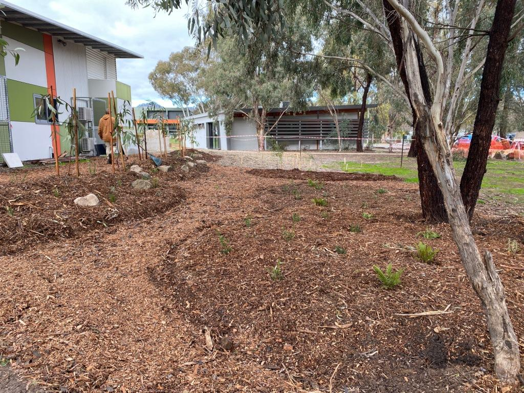 Indigenous teaching garden planting finished